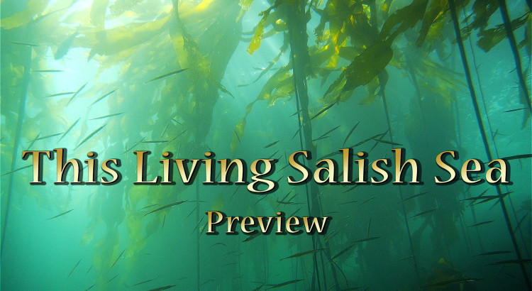 This Living Salish Sea- preview